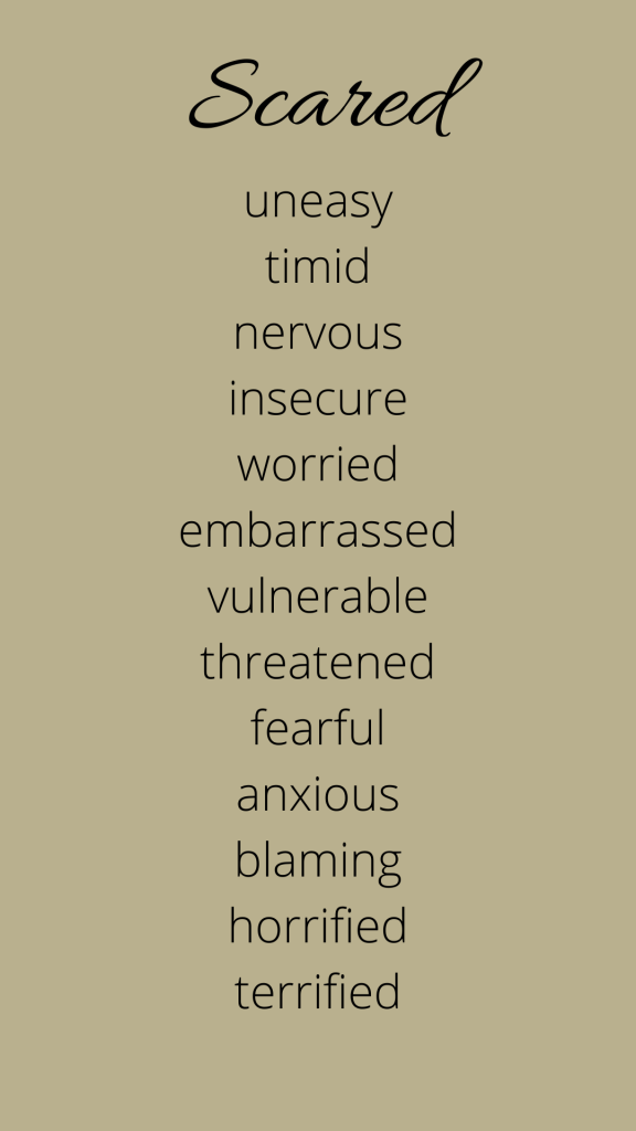 A list of emotions connected to fear.