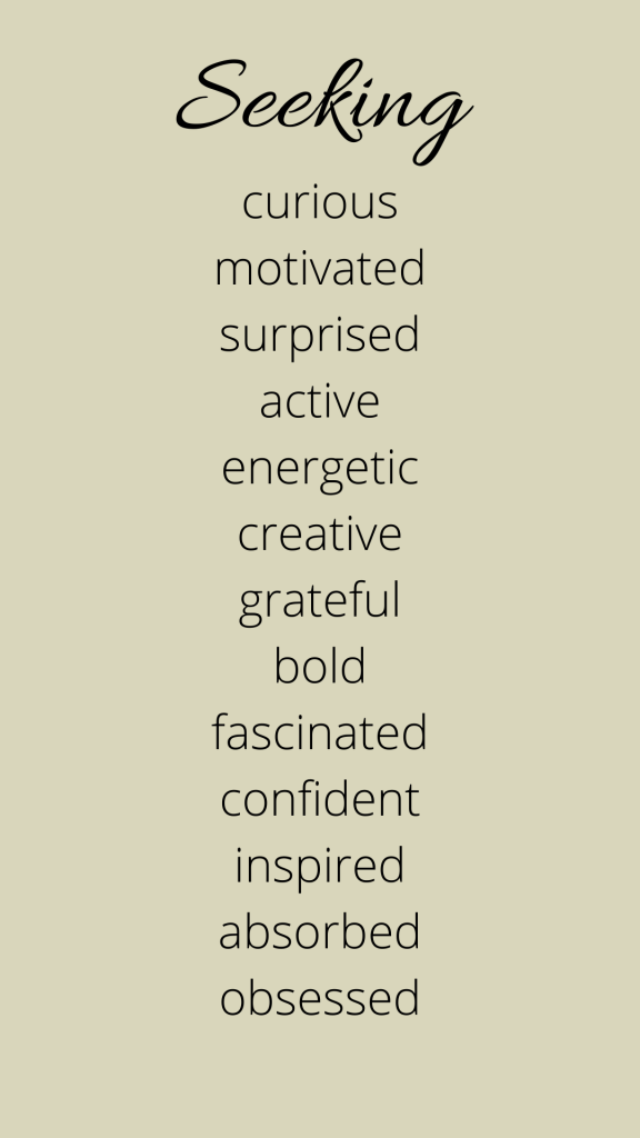 A list of emotions connected to Seeking..